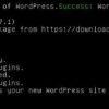 wordpress installation successful